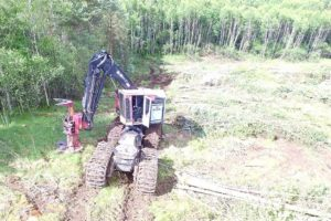 Feller Buncher Timberpro TF830C Quadco 21sc (4)